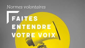 Couverture du flipbook sur les normes volontaires